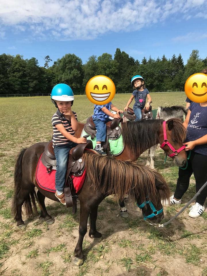 Cours Baby poneys